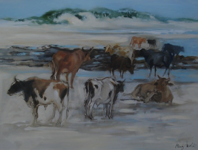 Mary Fowlds Nguni Cattle on the beach