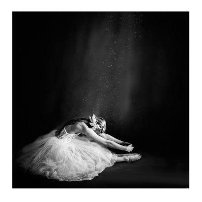 Ballerina poster fra Selected by Walnutstreet, designet av Vanessa Paxton. Vanessa Paxton er en kanadisk fotograf som ble forelsket i fotografering da h...