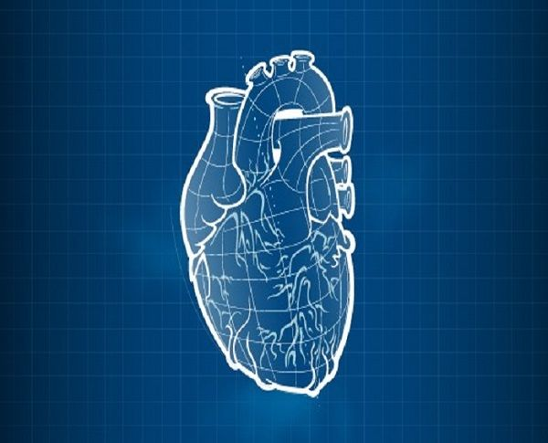 3-D printing is an amazing technology playing a significant role as science as it expands their ability to engineer tissues and organs in the lab via 3d printer.  http://www.3dprintersonlinestore.com/3d-printing-organs-getting-closer-to-reality
