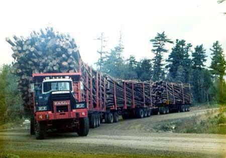 Mountain logging at its best.