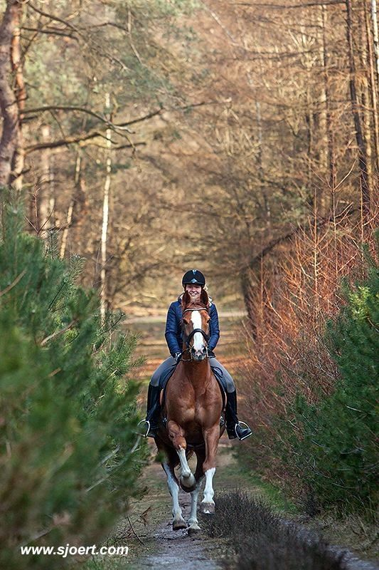 a relaxing ride in the countryside - little better! #horses