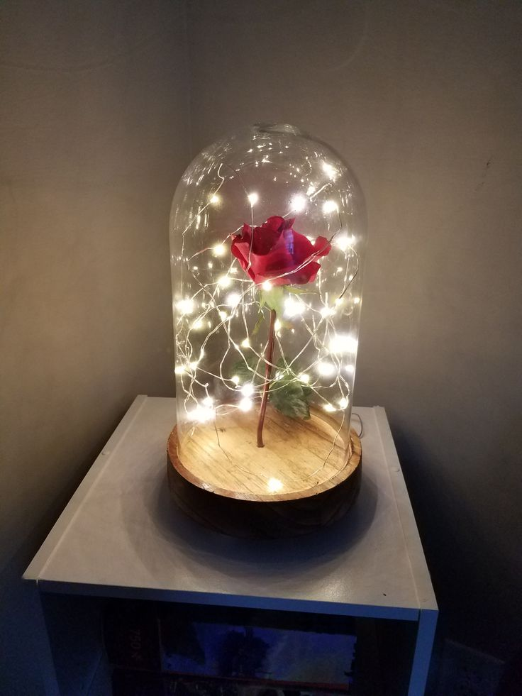 DIY Beauty and the Beast Rose.  I made this on my own. Cloche and wire lights come together from kirklands. Then I bought a rose at hobby lobby. I drilled a small hole in the wood base and stick the rose in that with some glue to reinforce it. Then I worked the lights around it. Super easy and it probably cost $20 max #DIYArtsandCrafts