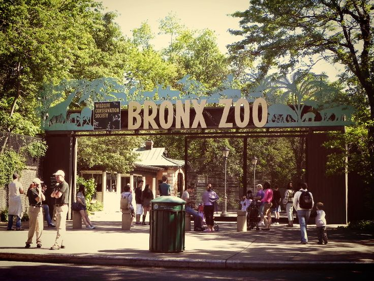 The Bronx, New York | Visiter le zoo du Bronx - Bons plans New York, blog Partir à New York