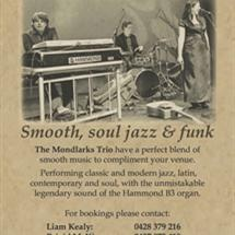 From relaxing dinner music to Jazz, swing, Latin,  Blues and Contemporary. The Mondlarks Hammond Trio are a group for all occasions. ...