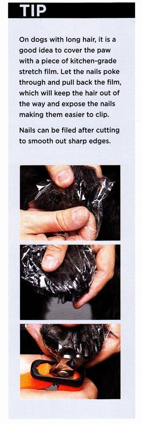 How to trim your dog and cat's nails safely by using plastic wrap to pull the fur out of the way from the book DIY Dog Grooming #catgroominglonghair
