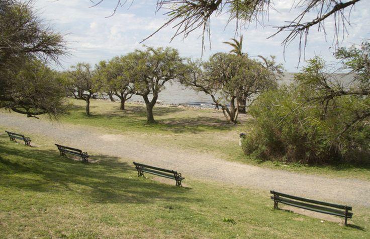 la Reserva Ecológica, el espacio verde con mayor biodiversidad dentro de la Ciudad de Buenos Aires, cumple 30 años. Por esto, habrá muestras fotograficas y visitas guiadas por el lugar. El 5 de junio de 1986, las autoridades de la Municipalidad de Buenos Aires proclamaron a estas 350 hectáreas de la Costanera Sur como Parque Natural y Zona de Reserva Ecológica. Así, la Reserva se convirtió en la primera Área Natural Protegida de la Ciudad de Buenos Aires.