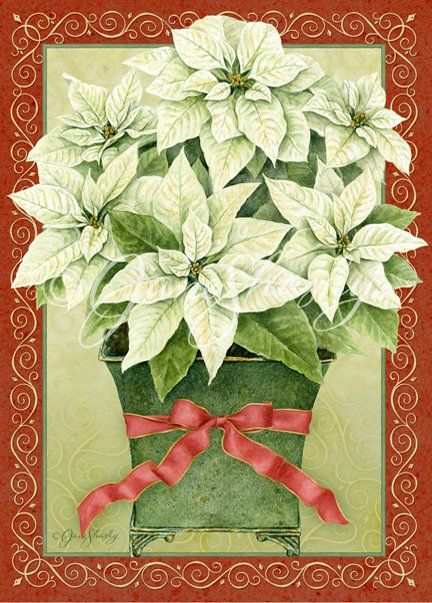 Jane Shasky Картинки Pinterest Love Poinsettia And By