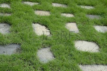 Image result for overgrown garden path