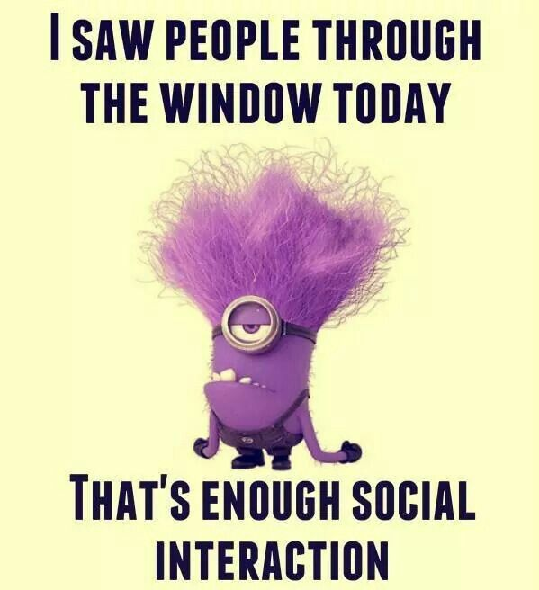 Purple Minion Memes Funny: 71 Best Images About Minions On Pinterest