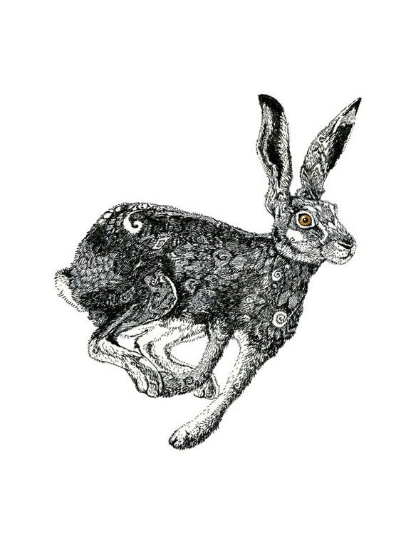 Hare Print Hare illustration 117x165 by ChasingtheCrayon on Etsy, £19.00