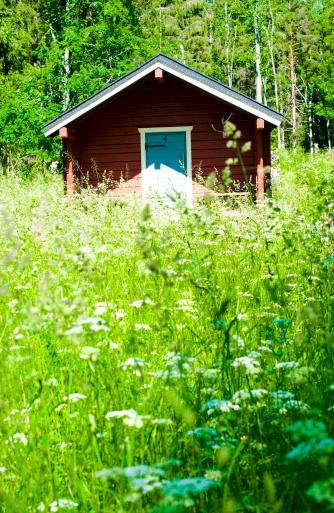 Summer in Finland