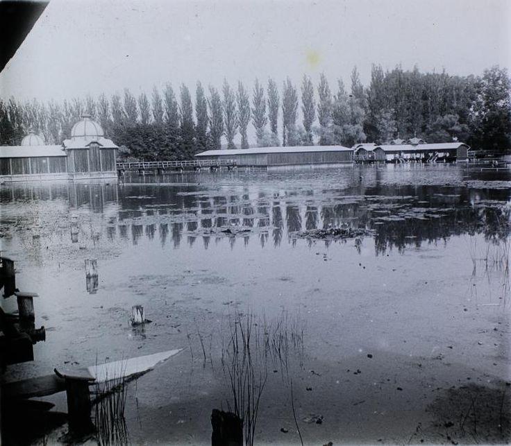 Hévíz Tófürdő 1905