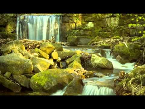 Babbling Brook Nature Sounds: Sleep Music, Relaxing Music for Meditation and Baby Sleep