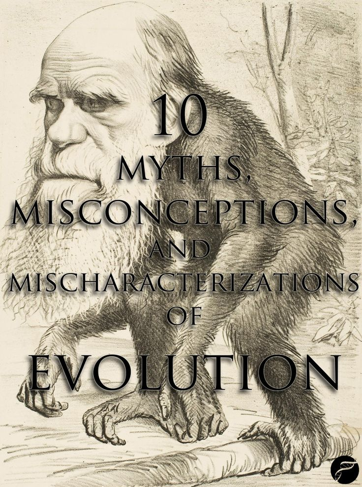evolution misconceptions Popular opinion routinely espouses ten arguments for evolution that are simply nothing more than myths.