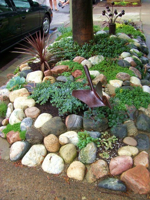 17 best images about no mow lawn ideas on pinterest for Free rock garden designs