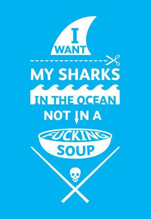 I want My Sharks in the Ocean