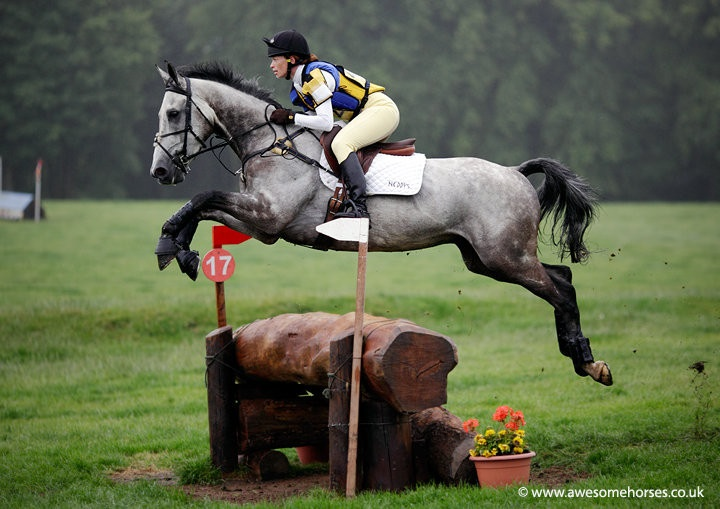 Horses jumping cross country - photo#43