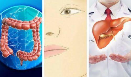 Curiosidades y noticias sobre salud, datos curiosos, descubrimientos, investigaciones y estudios sorprendentes
