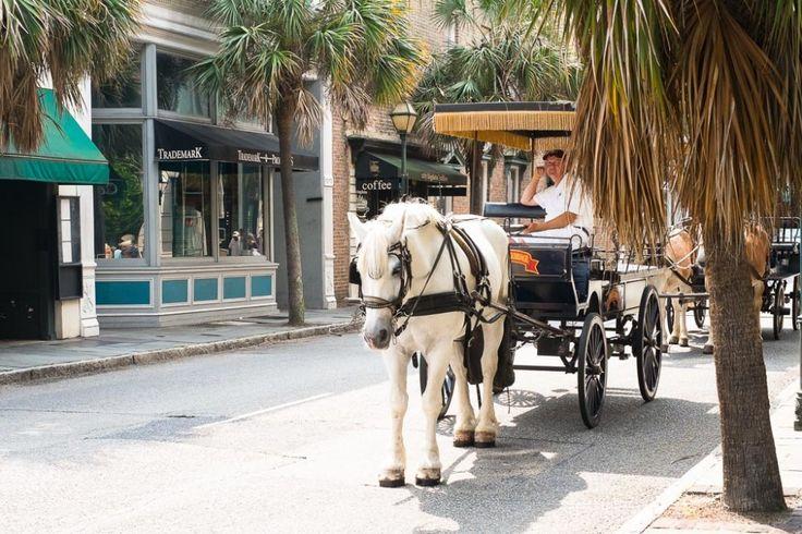 Carolina Queen Charleston Harbour Tours