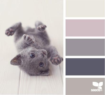 Palette pastel: gris, taupe et une pointe de rose / Serene color scheme: grey, pink.