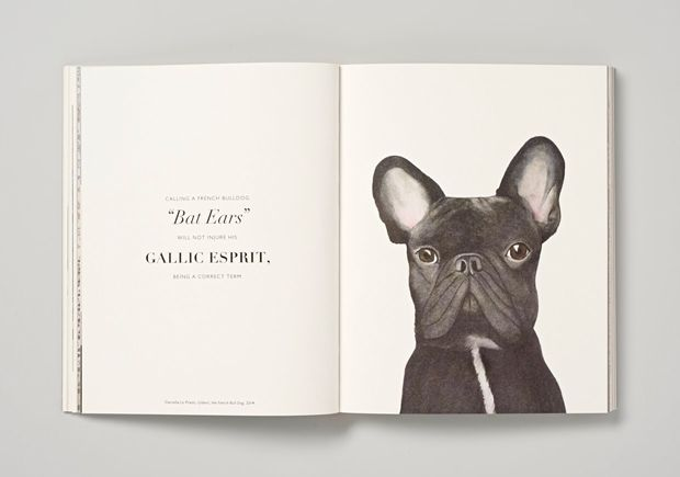 'Gilbert, the French Bull Dog' by Daniella Lo Presti