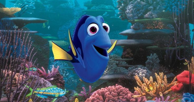 Pixar's 'Finding Dory' Trailer Has Arrived -- Everyone's favorite forgetful fish is back in the first trailer for Disney Pixar's 'Finding Dory'. -- http://movieweb.com/finding-dory-trailer-pixar/