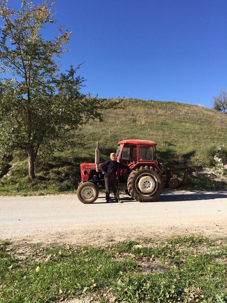 A day in the fields of #greek #saffron #krocuskozanis