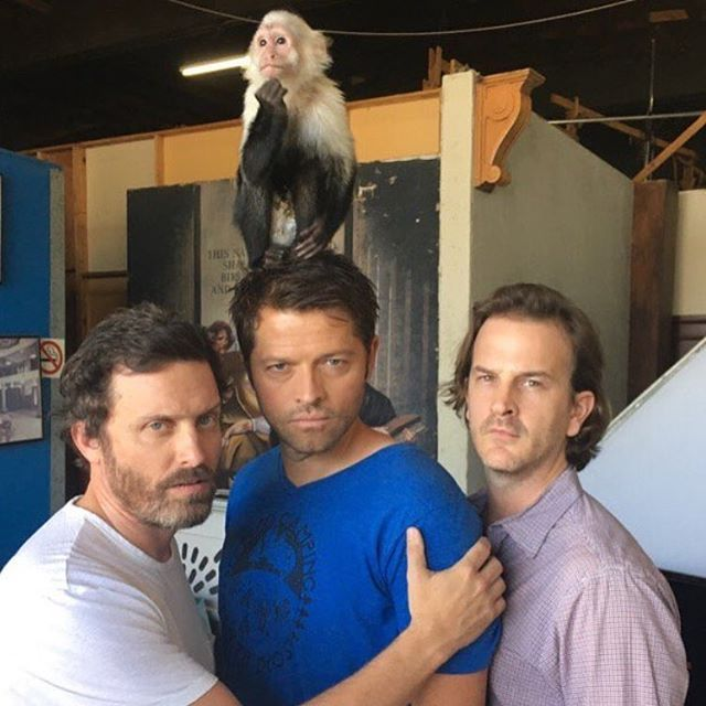If it was any one other then these three I might question this photo but right now I am just really surprised the monkey isn't wearing clothes or something