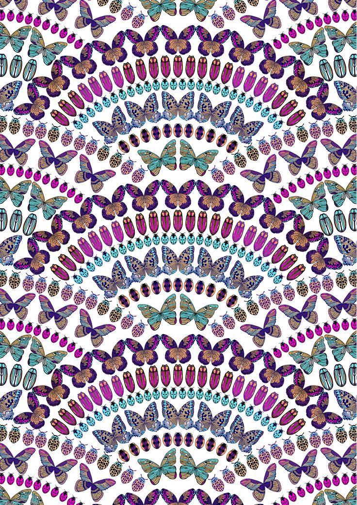 Papilio (multi)
