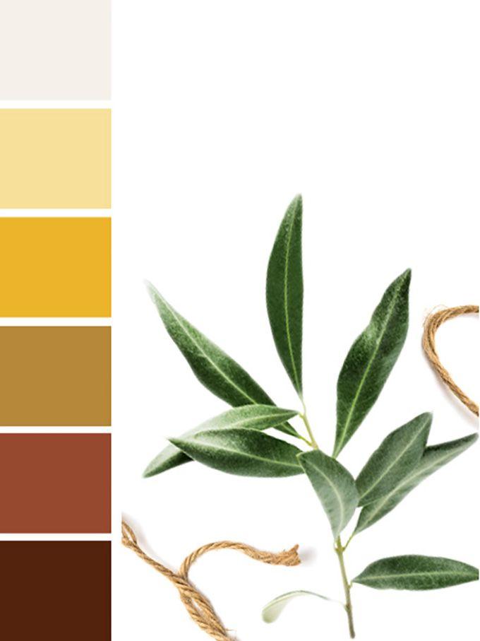 Color Caldera Ideas Y Trucos Para Decorar Decoracion De Hacienda Decoracion De Interiores Moderna Colores