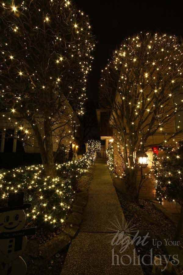 Top 46 Outdoor Christmas Lighting Ideas Illuminate The Holiday Spirit Arch In 2020 Outdoor Christmas Lights Decorating With Christmas Lights Christmas Lights Outside