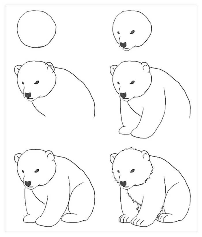 Картинки животных которых легко нарисовать
