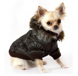 #ZoomOn vous propose une sélection de manteaux pour #chiens.  Venez la découvrir sur http://blog.zoomon.fr/selection-de-manteaux-pour-chiens-2