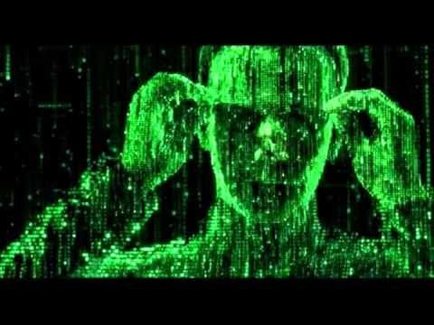 PROGRAMA DESPERTOS-UNIVERSO HOLOGRAFICO - YouTube