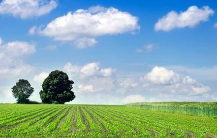 Schoone WOONwensen screent haar leveranciers op duurzaamheid, zoals zonwerings fabrikant BeCe.  (klik op foto voor hun verslag)