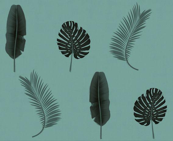 #rumruk #wallpaper #leaves #turquoise #blackandwhite #shadow