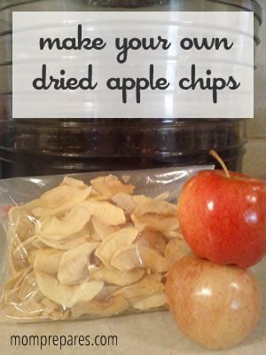 What kid (or mom?) doesn't like dried fruit? It's chewy and sweet and usually less messy than the fresh fruit. Dried apples keep longer than fresh so it's a great way to preserve an apple harvest in very little space, like your prepper's pantry. I also find that drying is a lot less work than…