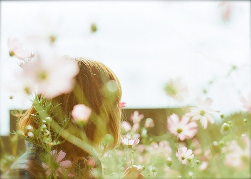 soft: Wild Flower, Spring Flower, Spring Time, Flower Shoes, Pretty Pink, Film Photography, Pretty Things, Beautiful, Spring Style