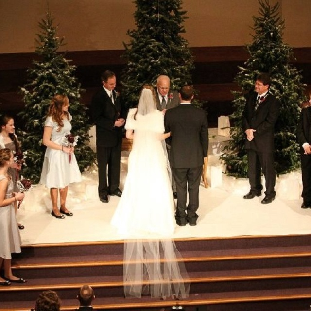 Winter Wonderland Wedding Real Christmas Trees Throughout The Whole Church And Reception Area Pinterest