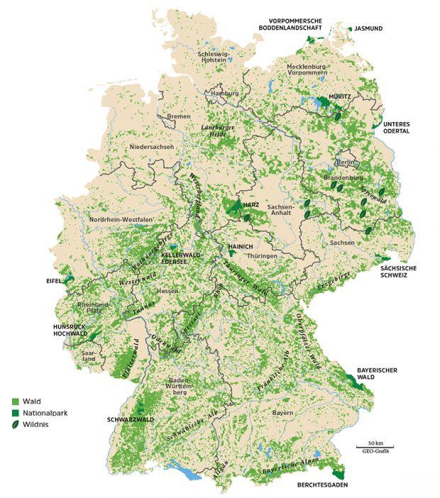 Wo es in Deutschland noch richtige Wildnis gibt