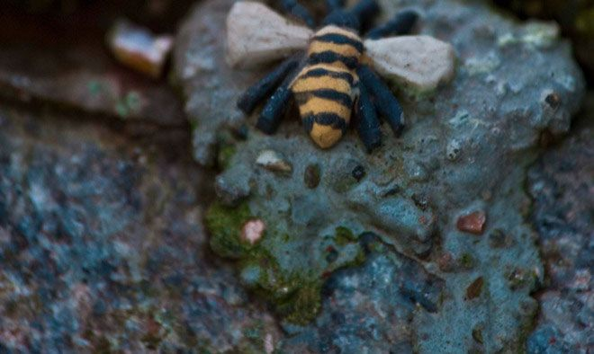 The fact that somebody has put a tiny hornet in a joint between two granite stones somewhere up on #Södermalm Island could be an expression of the longing for summer, and may have even inspired Stieg Larsson to use hornets as a metaphor for #Swedish climate and culture. #VisitSweden