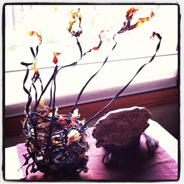 Seaweed basket and carved mushroom ( Artists Conk: Ganoderma applanata ) both by Monique Risch