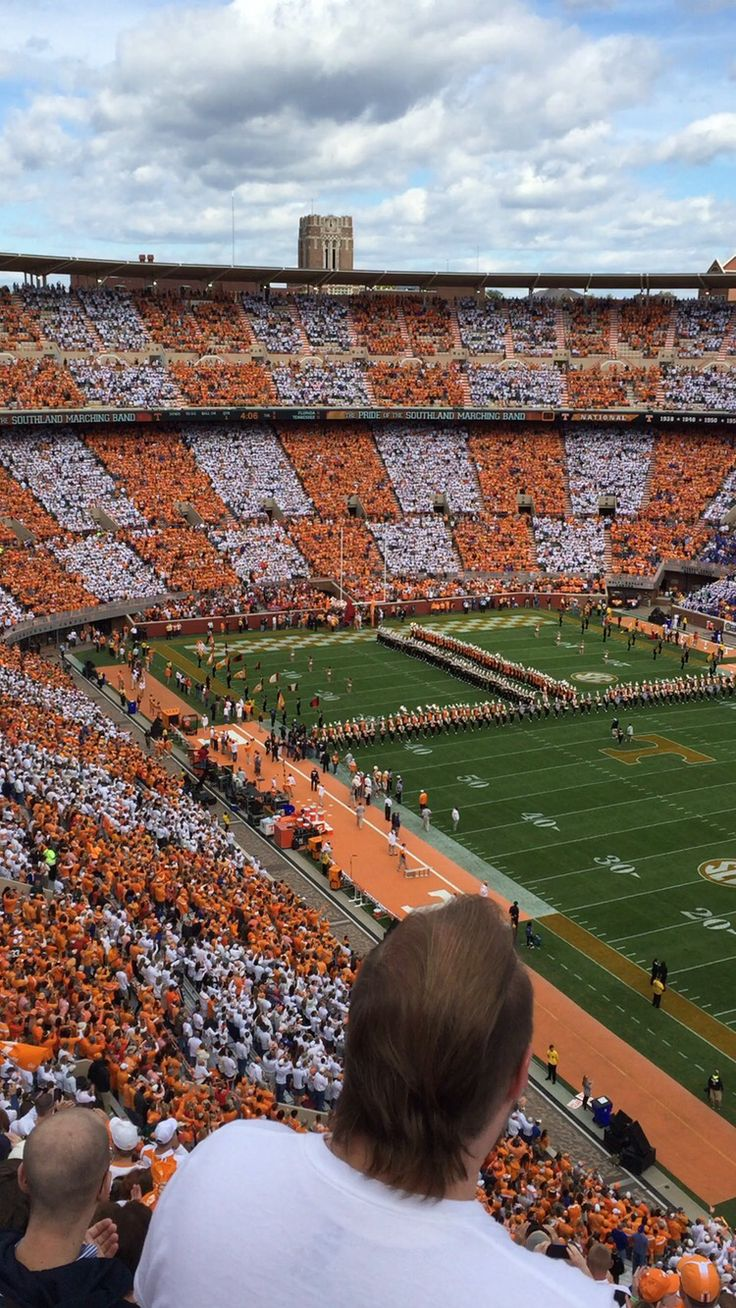 #checkerneyland #realpicture #gbo