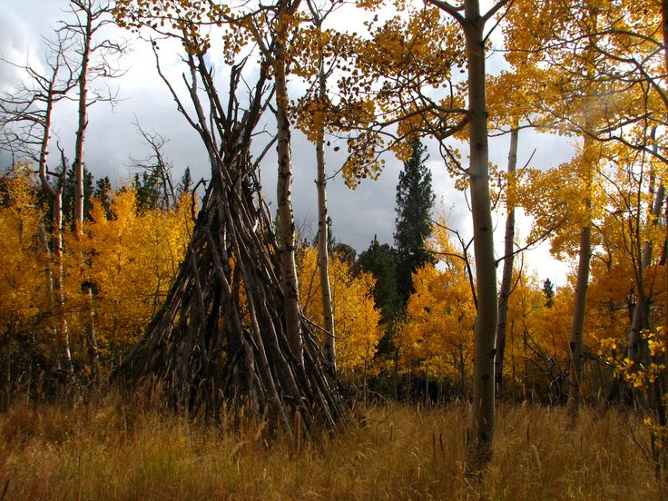 Aspen Trails in Laramie, Wyoming