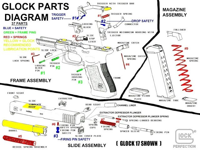 glock pistol parts diagram color coded, showing frame pins, springs,  magazine assembly, and lubrication points  | glock confidence | guns,  firearms, glock