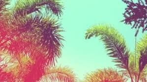Image result for summer tumblr