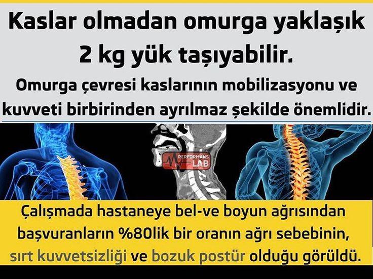 SIRT AĞRILARININ NEDENLERİ Genel tanım içinde sırt ağrısı şikayetlerinin sebebi yorgunluktur.  İdeal postürde vücudu dik tutmaya yarayan kaslar aktif değildir.Sadece baş ağırlık merkezi öne arkaya kaydığında aktif olup kasılırlar.Bozuk postür ve omurga bozuklukları sürekli sırt kas gruplarını aralıksız çalıştıracaktır.  Türkiye çapında yapılan taramalarda 18 ile 80 yaş arasındaki sırt ağrısından şikayet edenler arasında yaş grupları (18-30,31-45,46-80) itibarı ile yüzdelik olarak bir fark…
