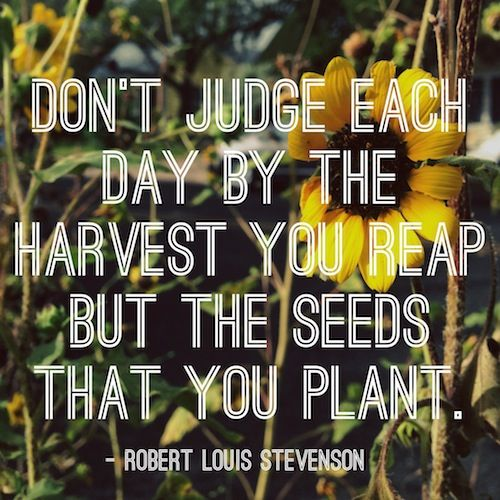 Donu0027t Judge Each Day By The Harvest You Reap, But The Seeds That You Planted .
