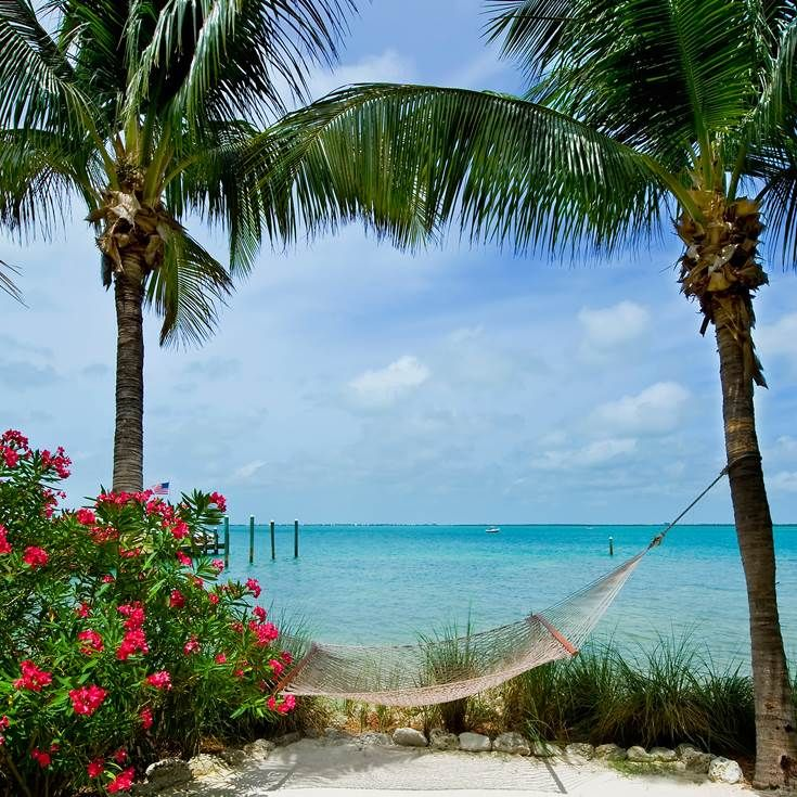 The ultimate relaxation spot, hammock in Florida Keys