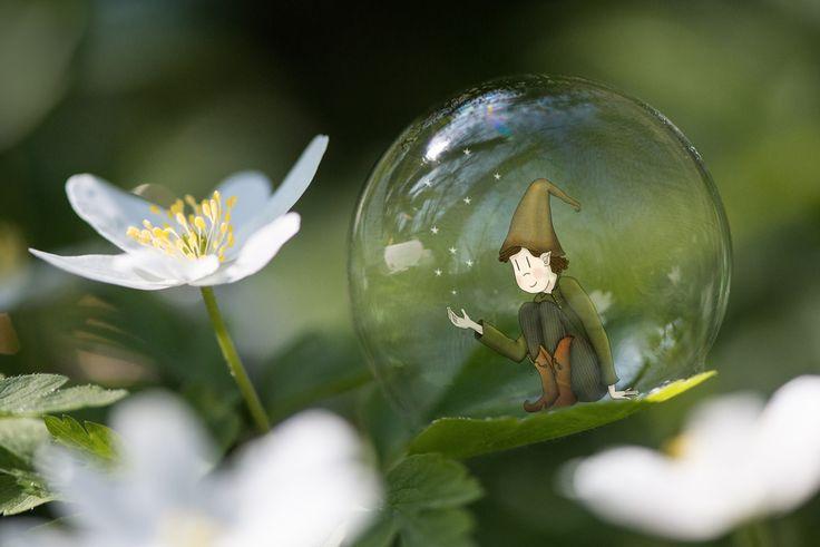 Illustration d'un lutin dans sa bulle... Un peu comme Tomi, mon neveu autiste.  Lumi Poullaouec  #autisme #nature #lutin #fleur #photographie #imaginaire #bulles